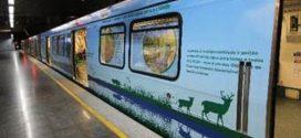 Metrô de Brasília tem vagão com tema sobre Fórum Mundial da Água