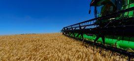 Cai o valor da produção agropecuária