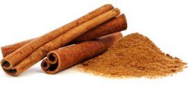 Canela ajuda a melhorar perfis de colesterol e cólicas menstruais. Saiba mais