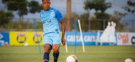 Cruzeiro se reapresenta e inicia preparação para decisão na Copa Libertadores
