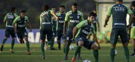 América se reapresenta em busca da manutenção do bom momento no Brasileiro