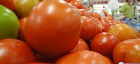Inflação medida pelo IPC-S desacelera na segunda semana de julho