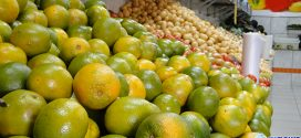Alta nos preços de verduras, legumes e verduras já é notada nos sacolões de Pará de Minas