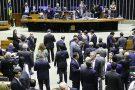 Maioria na nova Câmara dos Deputados é de empresários e profissionais liberais