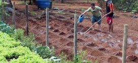 Comunidade quilombola a 50 km de Brasília luta para manter território e identidade