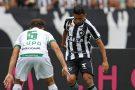 Botafogo bate o América-MG e volta a vencer no Brasileirão