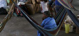 ONU pede que autoridades tenham mais atenção com indígenas