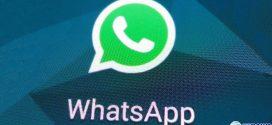TSE nega pedido de liminar do PSOL para restringir WhatsApp nas eleições