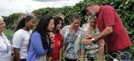 Curso ensina paraminenses como colher e processar plantas medicinais