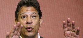 """Fernando Haddad quer fazer """"arco de alianças"""" contra retrocessos"""