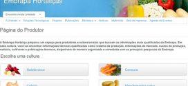 Lançada página para divulgar pesquisas e auxiliar produtor de hortaliças
