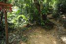 Brasil anuncia construção de rede de trilhas de 18 mil km
