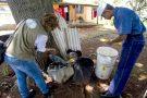 Pesquisa revela fármaco que pode eliminar vírus da chikungunya