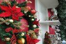 Comércio paraminense antecipa preparativos para atender quem procura objetos para a decoração natalina