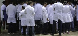 Médicos que se formaram no exterior tentam validar diploma no Brasil