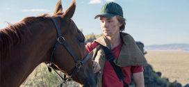 Cine News: A Rota Selvagem