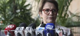 Tereza Cristina quer fiscalizar recursos repassados a ONGs