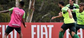 De olho no Palmeiras, Coelho inicia preparação para mais uma decisão