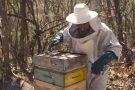 Apicultor paraminense conquista título de melhor produtor de mel do Brasil. Conheça a história e o trabalho do campeão